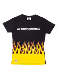 this is All Flames T-Shirt
