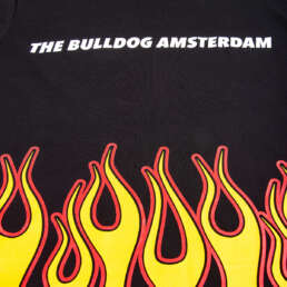this is a All Flames T-Shirt