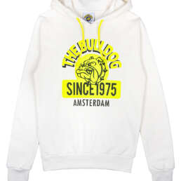 this is a Neon 1975 Hoodie