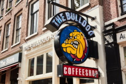 The Bulldog Rockshop